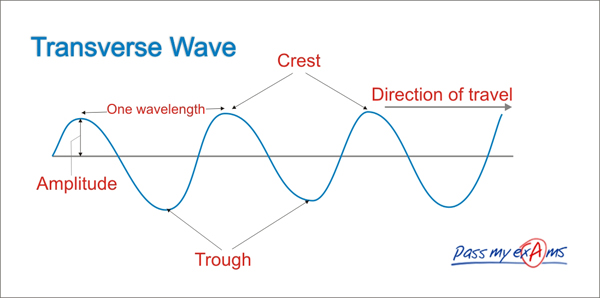 Transverse And Longitude Waves Lessons Tes Teach