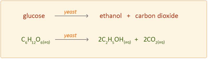 Image result for fermentation equation